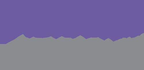 BRAINUP_logo